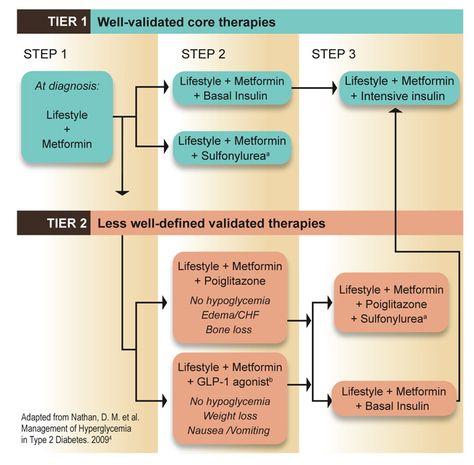 Metformin And Victoza For Weight Loss Metformin 500mg Tab My