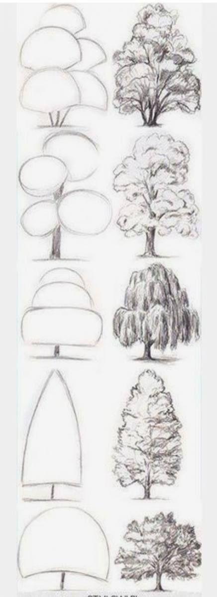 Realistic Drawings, Eye Drawing, Art Painting, Sketches, Drawing For Beginners, Art Drawings Sketches, Flower Drawing, Tree Drawing, Learn Watercolor
