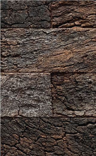 Corkart I Wandpaneele Aus Kork Natural Flooring Stylish Flooring Cork Flooring