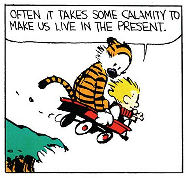 Calvin And Hobbes Quotes, Calvin And Hobbes Comics, Cartoon Network Adventure Time, Adventure Time Anime, Chemistry Cat, Live In The Present, Humor Grafico, Fun Comics, Hobbs
