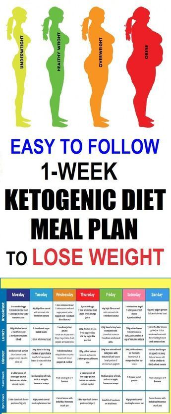 easy menu to lose weight fast