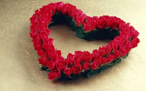 احلي صور ورود جميلة صور باقات ورد رومانسية صور زهور صور ورد بلدي