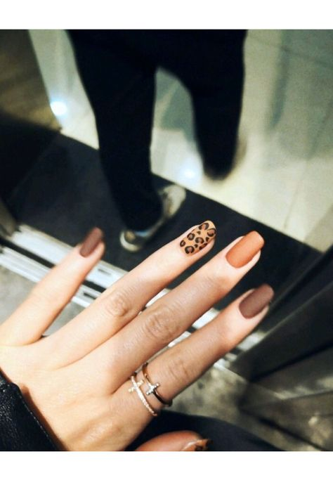 The best chic leopard nails designs to try out in fall/winter season in are you prepared to wear them on and hit the street? Short Nail Designs, Fall Nail Designs, Acrylic Nail Designs, Chic Nail Designs, Nail Polish Designs, Gel Polish, Leopard Nail Designs, Leopard Nails, Stylish Nails