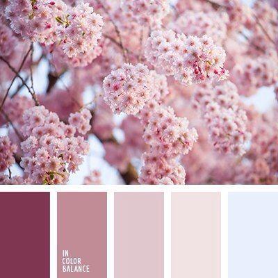 In Farbe Altrosa Farbe Wandfarbe Farbtone Rose Wandfarbe Und Idee Farbe