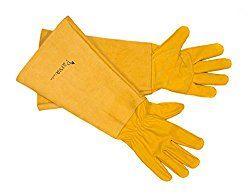 Les meilleurs gants de jardinage pour les épines