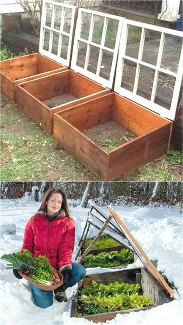 Use These Tips To Grow A Better Organic Garden Diy Greenhouse