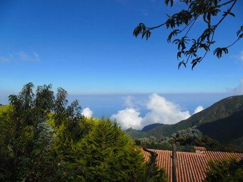 Galipánes un pequeño poblado ubicado en la ladera norte delcerro el Ávila, en elestado Vargas,Venezuela. Es famoso por sus cultivos de flores y suculentos restaurantes. Wikipedia.