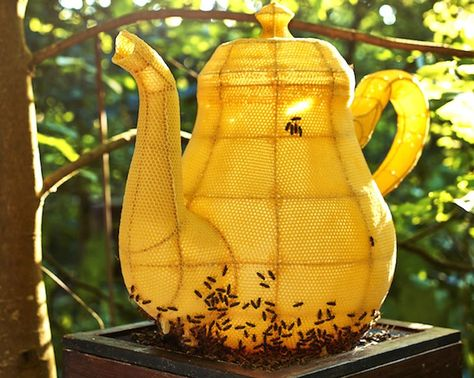 Artist Tomas Libertiny joined forces with 60,000 bees to create this splendid wax-and-metal teapot sculpture.