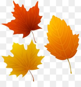 Autumn Leaves Png Autumn Leaves Transparent Clipart Free