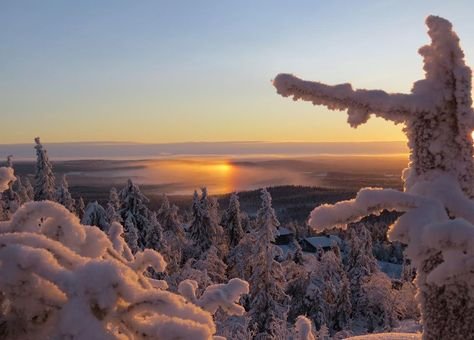 The rugged and cold beauty of nature, Lapland Finland