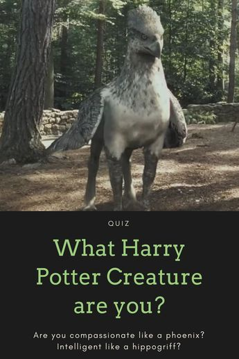 Which Creature from Harry Potter are You? | Books and Movies