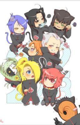 The akatsuki kittens!   funny   Akatsuki, Naruto cute, Itachi