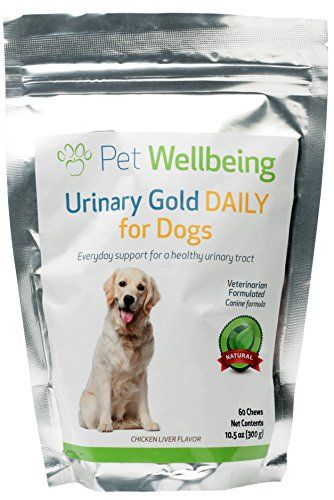 Pet Wellbeing Urinary Gold Daily For Dogs Natural Daily Maintenance Of A Healthy Urinary Tract In Dogs 60 Chews Holistic Pet Urinary Tract Dog Health