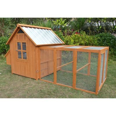 Producer 039 S Pride Hill Country Coop Building A Fence Chickens Backyard Chicken Enclosure
