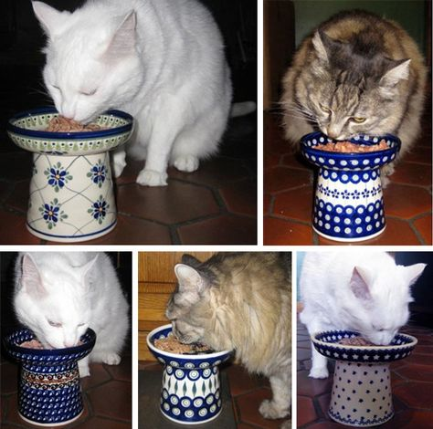 Classy raised cat feeders, DIY with a flower pot and saucer! Love this idea..must work on a sample