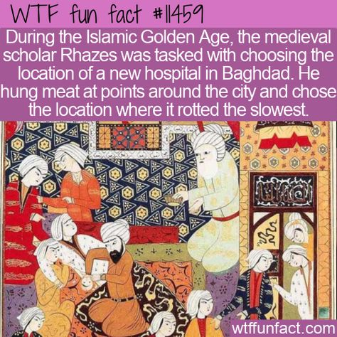 WTF Facts : funny, interesting  weird facts WTF Fun Fact - Where To Build A Hospital #wtf #funfact #wtffunfact 11459 #baghdad #funnyfacts #Health #History #hospital #People #randomfact #randomfacts #randomfunnyfact #Rhazes #wtffunfact