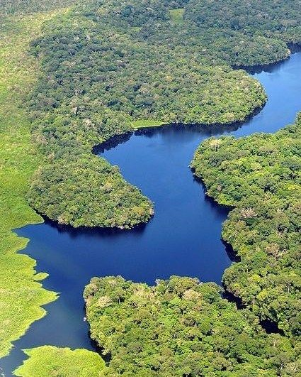 The Amazon River The Longest And Most Caudous In The World That Crosses Peru Birth After That Colombia A Aerial View Wonders Of The World Amazon Rainforest