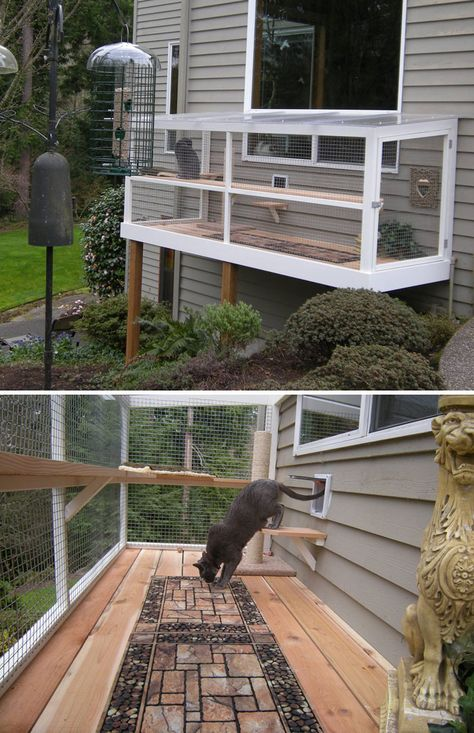 cat patio Cat Patios, Known As Catios, Are The Latest Way To Spoil Your Beloved Kitty Pics) Cat Jungle Gym, Outdoor Cat Enclosure, Diy Cat Enclosure, Reptile Enclosure, Cat Window, Cat Playground, Outdoor Cats, Cat House Outdoor, Cat Patios