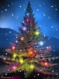 Sapins De Noël Animés 10 Fonds Décran Mobile Gratuits