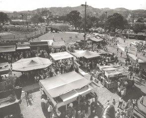 When The Walnut Festival Used To Be The Grape Festival Walnut Creek Grape Festival Abandoned Places Walnut Creek
