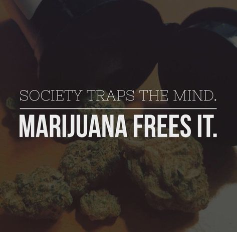Pin on Weed Quotes