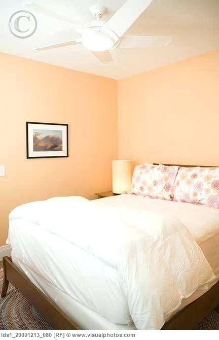 Bedroom Ideas Peach Bedroom Wall Colors Peach Bedroom Bedroom