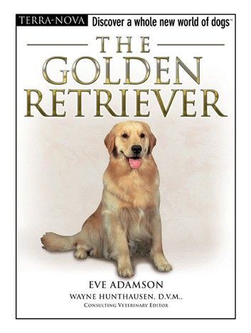 The Golden Retriever In 2020 Dog Books Dogs Golden Retriever