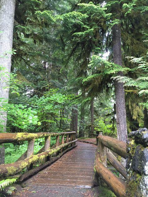 Footbridge near Sahalie Falls, Eugene, Oregon