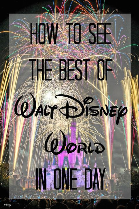 Disney VIP Tour: How to see Walt Disney World in One Day - Redhead Baby Mama | Atlanta Blogger