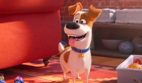 The Secret Life Of Pets 2 2019 Teaser Trailer Patton Oswalt Gets Taken To The Veterinarian The Secret Life Of Secret Life Of Pets Pets Movie Secret Life