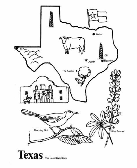 Texas State Outline Coloring Page Texas Symbols State Symbols