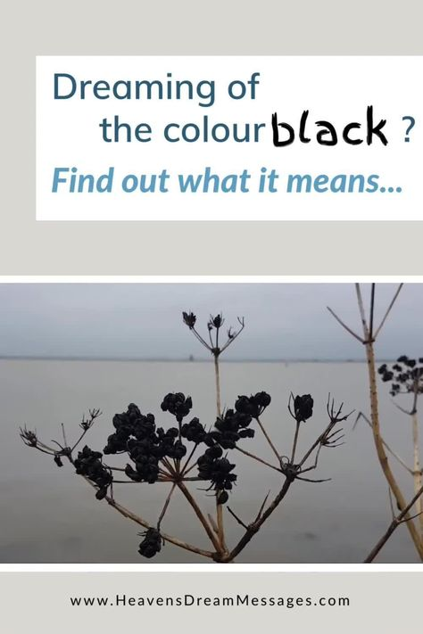 Dreaming of the colour black? Wondering what it means? Discover the spiritual meaning of black, and how it relates to the meaning of mystery in the bible. dream symbols | dream interpretation #dreams #bible #dreamsymbols