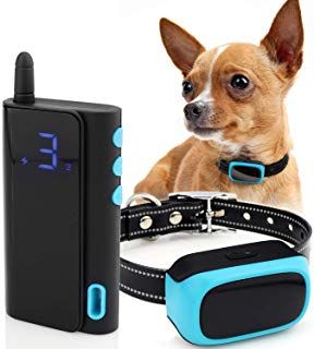Exuby Shock Collar For Small Dogs 5 15lbs Rechargeable