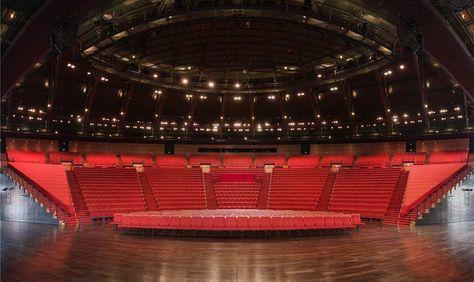 Amphitheatre Lyon Salle De Spectacle Architecture Theatre