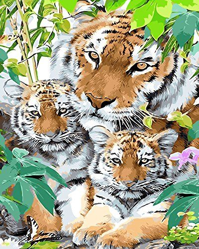 Tiger Paint By Number Kits Paint By Number For Adults With