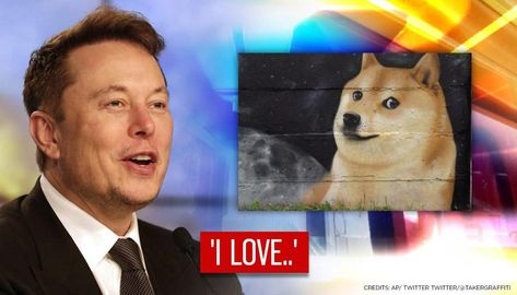 Elon Musk reveals why he loves Dogecoin after tweeting in support of meme cryptocurrencyRepublic TV