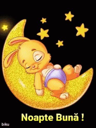 Noapte Buna GIF - Noapte Buna - Discover & Share GIFs