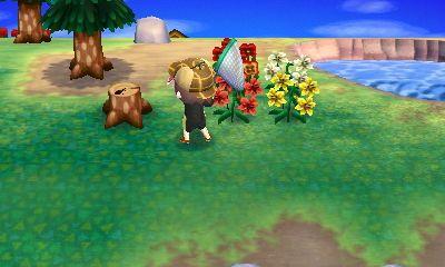 d186a1b36876961efd4c3c4afa27621a - How To Get Fishing Pole In Animal Crossing New Leaf
