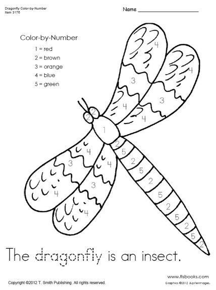 Arthropod Coloring Worksheet Answer Key Dragon Fly Craft Insects Kindergarten Color Worksheets