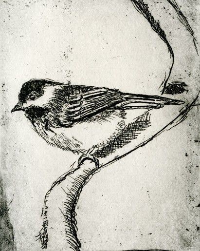 Bird decor wall art black capped chickadee bird print black and white decor