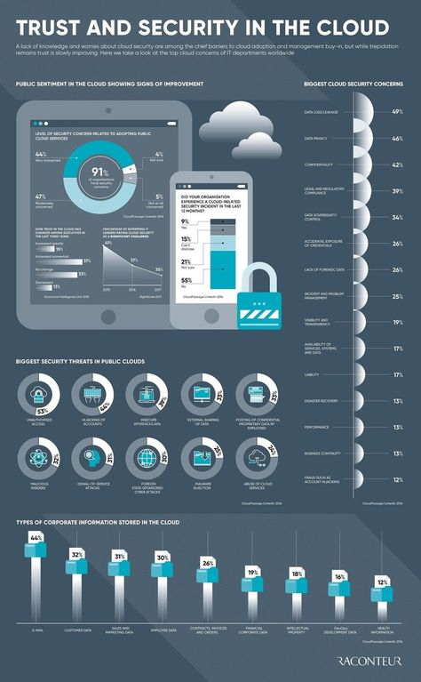 Trust and security in the cloud #infographic #security #cloud