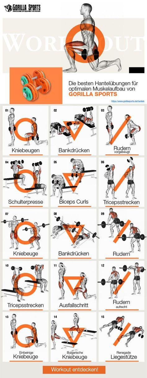 Hantelnübungen von GORILLA SPORTS® - In unserem Magazin (www.gorillasports.de/magazin/) findest Du die besten und effektivsten Übungen. Reinlesen lohnt sich!  #gorillasports.de #sport #fitness #homegym #hanteln #workout #trainingsplan #sportmagazin