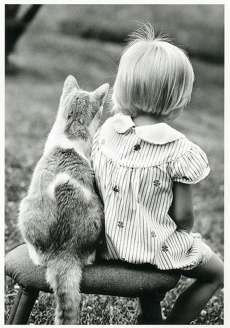 LA fillette et le chat ou le chat et la fillette ? ^^ Photo de Ichabodhides