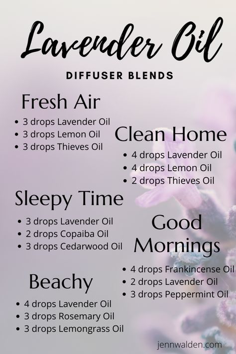 All About Lavender Essential Oil - Jenn Walden Young Essential Oils, Essential Oils Guide, Doterra Essential Oils, Cedarwood Essential Oil Uses, Lavender Essential Oil Benefits, Lavender Oil Uses, Essential Oil Burner, Essential Oil Carrier Oils, Stress Relief Essential Oils