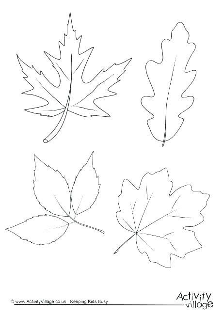 Autumn Leaf Coloring Pages Leaf Coloring Page Autumn Leaf Color Autumn Leaves Art