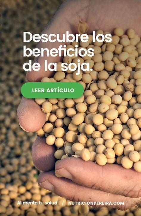 isoflavonas de soja para bajar de peso