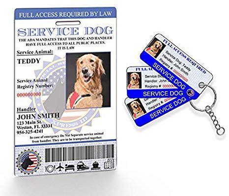 Amazon Com Holographic Service Dog Id 3 Key Tags Includes