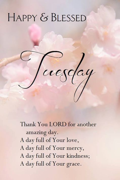 Have a Happy & Blessed Tuesday!