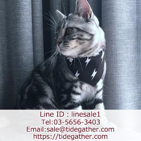 ブランドペット用品ファッション 通販 Tidegather タイドギャザー ペット用品 ペット 猫