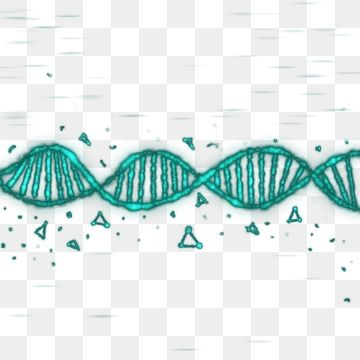 Biotechnology And Genetics Color Icons - Download Free Vectors, Clipart  Graphics & Vector Art